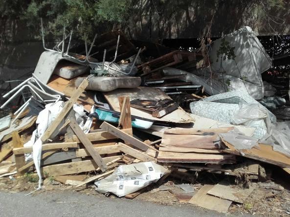 Rifiuti, degrado e topi: l'allarme della ministra Lorenzin: «A Roma c'è un problema igienico»