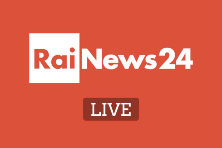 Cesare San Mauro ospite a Rai News 24